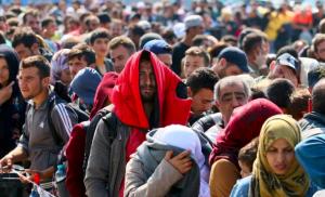 трудоустройство беженцев