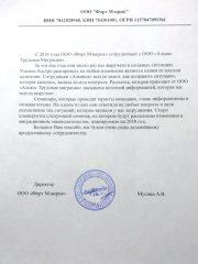 Мусина А.В.
