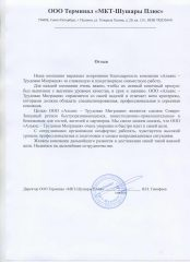 Тимофеев В.Н.