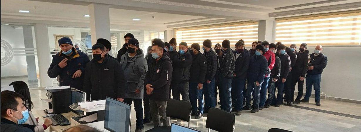 Привлекаем мигрантов в РФ через оргнабор